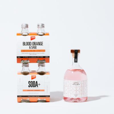 BUDBURST GIN X CAPI SODA+  BETTER TOGETHER PACKS